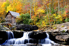 Babcock State Park (travelphotographer2003) Tags: babcockstatepark gristmill fayettecounty westvirginia autumn fallcolor view serenity solitudealleghenymountains appalachianmountains beautyinnature freshness purity refreshment tranquilscene mist forest fall season leaves gladecreekgristmill