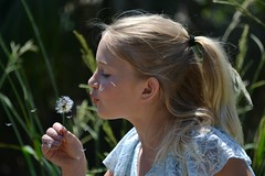 Make a Wish (leighla1712) Tags: dandelion flower floral happy candid wish magic green