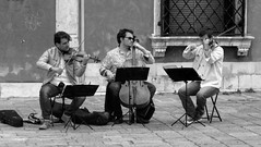 Musicians in Venice (dckellyphoto) Tags: 2014 italy italia veneto venice venetia venezia europe canonpowershotsx160is man male busker playing strings instruments cello violin trio people group outside monochrome