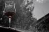 Red Wine (furniito.rebecca) Tags: wine red cup bariloche patagonia argentina