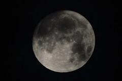 DSC_7418 (seustace2003) Tags: baile átha cliath ireland irlanda ierland irlande dublino dublin éire moon maan luna lune an ghealach mjesec