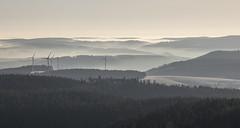 after sunrise (crazyhorse_mk) Tags: kandel blackforest schwarzwald baden badenwuerttemberg germany landscape nature mountain sunrise valley forest sky morning