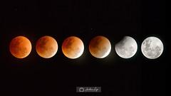 Blue Blood Moon (Jordan Lye) Tags: eclipse moon red blood bluemoon