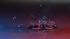 Speckled waterworld, for Macro Mondays (Wim van Bezouw) Tags: macromondays speckled waterdrop water drops pluto sony ilce7m2 plutotrigger