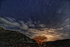 Under the Stars (Sanjiban2011) Tags: uae abudhabi hatta nightphotography longexposure stars tree nature outdoor landscape astrophotography clouds cloudscape night nightsky nikon d750 fullframe tamron tamron1530