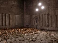 The Eve by Lars Nordström -