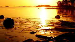 February afternoon in Lauttasaari (Helsinki, 20180204) (RainoL) Tags: crainolampinen 2018 201802 20180204 balticsea drumsö february finland fz200 geo:lat=6015422828 geo:lon=2486931323 geotagged helsingfors helsinki hevosenkenkälahti hästskoviken ice lauttasaari nyland seashore sun takaniemi taxnäs uusimaa winter fin