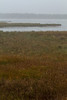 Dixon_JB_485_3999 (Joanne Bouknight) Tags: dixonwaterfowlrefuge illinois mist morning observationtower rain storm thewetlandsinstitute