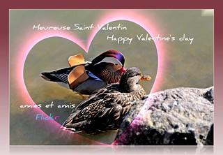 Heureuse Saint-Valentin ♥♥♥