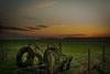 AgrarianSunset (stevefge) Tags: beuningen fields gelderland landscape sunset sundown schemering farm glow gloed winter nederland netherlands nl nederlandvandaag reflectyourworld grass trees bomen
