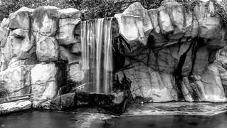 Waterfall - B&W