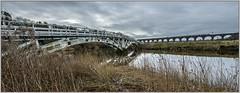Horse bridge to iron horse (Blaydon52C) Tags: dutton weaver viaduct bridge bridges navigation canal chesire actonbridge rivers waterways railway rail railways viaducts virgin pendolino westcoast wcml