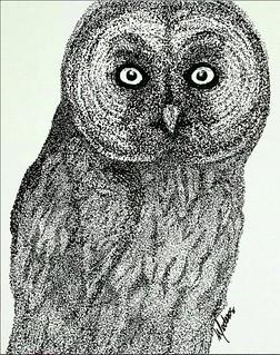 Great Grey Owl by Mederos
