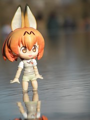 DSCN1258 (SethDanbo) Tags: cupoche nendo nendoroid orangehair redhair orange uniform fox ears nekomimi kitsune tiny little japan actionfigure