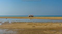 DSC_5199.jpg (sebfel) Tags: redsea locations beach asia saudiarabia