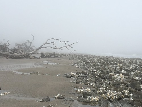Jekyll Island Jan 2018