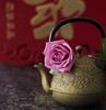 Brewing Up (Golden Ginkgo) Tags: teapot springfestival stilllife