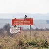 Danger! Sprawk! (stevedewey2000) Tags: sptacentre spta wiltshire salisburyplain sony70300g birds bird sparrowhawk hawk birdofprey bop kenko14xtc