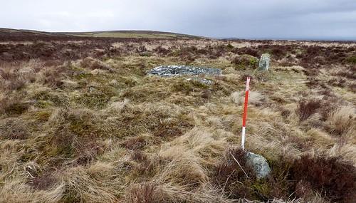 Grimslake Cist stone row