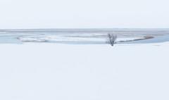 Cerknica Lake (happy.apple) Tags: otok cerknica slovenia si cerkniškojezero cerknicalake slovenija winter snow landscape snowstorm sneg zima presihajočejezero intermittentlake