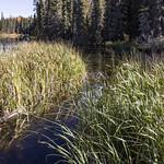 Waskesiu River in the fall, Prince Albert National Park thumbnail