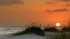 Sunset on the Gulf Coast (36430) (Mike S Perkins) Tags: ftmorgan beach sunset gulfofmexico gulfshores orange sand seaoats coast shoreline seascape clouds