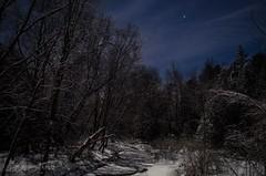 Frozen River (CC Photographic) Tags: stars night sky nikon longexposure forest snow springwatertownship ontario canada