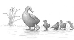 00000018 (Alex Hiam) Tags: bronze ducklings boston common garden sculpture duckling lost pen ink illustration childrens book bird