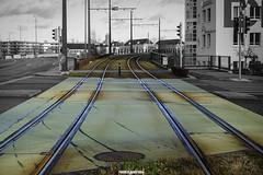 verde? (MarcoAgustoniPhotography) Tags: zürich new year green verde selective tram gleis binari dübendorf tombino