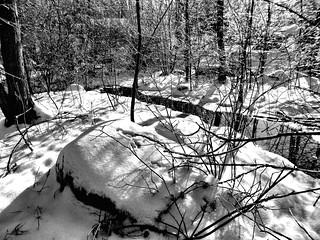 February - Winter Photo 9