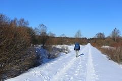 IMG_0240 (rudolf.brinkmoeller) Tags: eifel wandern natur eifelsteig hohesvenn