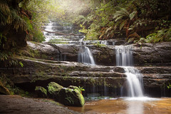 The Beautiful Terrace Falls    BLUE MOUNTAINS    NSW (rhyspope) Tags: australia aussie nsw new south wales blue mlountains hazelbrook lawson water waterfall creek river stream wet rainforest forest woods bush rhys pope rhyspope canon 5d mkii lush travel adventure explore rocks trees fern flora nature