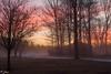 Misty sunrise in northeast Pennsylvania. (zoyasiudut) Tags: colorful sunrise foggy misty brilliant orange pink yellow
