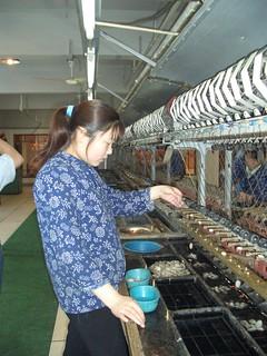 2004 - China Trip