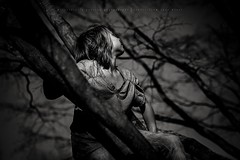 hanging in a tree (privizzinis passion photography) Tags: blackandwhite boy child childhood children outdoors people outside outdoor tree trees monochrome
