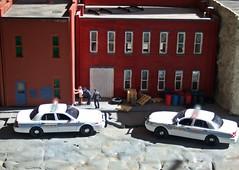 Caught 2/27/2018 (THE RANGE PRODUCTIONS) Tags: greenlight fordcrownvictoriapoliceinterceptor hoscalefigures 164scale dioramas diecast diecastdioramas model modular toy car
