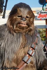 Chewbacca (Disneyland Dream) Tags: disney star wars disneyland paris 25 season force saison walt studios park 2018 chewbacca