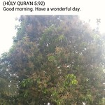 A verse from the holy QURA'N. thumbnail