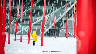 Under the snow - Dublin, Ireland - Street photography