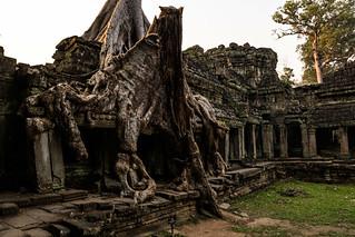 Angkor   |   Spung