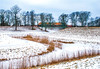 Outside The Old Town (bjorbrei) Tags: winter snow ice ramparts moat canal grass reed reeds trees oldtown gamlebyen fredrikstad norway