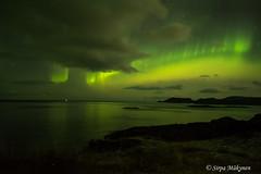 Mehamn tulet 35 (sirpamak) Tags: norja norway nordlys northernlights autumn auroraborealis aurora revontulet revontuli