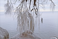 Mother Natures Decorations (Sue90ca Still No Flic*kr At Work :() Tags: canon 6d erieau ice lakeerie