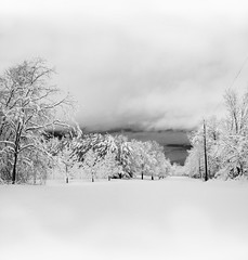 Wyckoff, NJ (• estatik •) Tags: wyckoff nj fields trees snow storm long exposure panorama black white blackwhite monotone bw bergen county new jersey