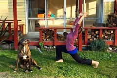 Maria macht mitten am Tag vor dem Yoga-Raum einen Halbmond. Buff empfindet das nur als Ablenkung vom Wesentlichen: Kuscheln!