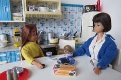 12. Enjoying cocoa and conversation (Foxy Belle) Tags: doll miniature hot cocoa chocolate dollhouse 16 scale playscale barbie food make skipper sisters bend leg brunette dog kitchen diorama blue white delft tin vintage cookies american girl sweater knitting pretty