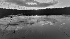 WP_20151129_10_42_48_Pro (www.ilkkajukarainen.fi) Tags: suomi100 suomi finland happy life visit travel traveling museum stuff nature luonto blackandwhite mustavalkoinen finlande winter talvi jää ice järvi lake