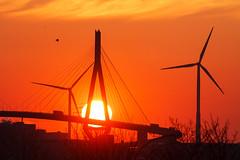 Geduld haben (Lilongwe2007) Tags: hamburg köhlbrandbrücke windkraftanlagen windräder vögel architektur brücke sonnenuntergang deutschland hafen industrie