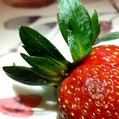 Strawberries with #imperfections still taste delicious! (shercredeur) Tags: imperfection macromondays hmm strawberry
