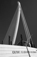 Ciutat de les Arts i les Ciències (Teelicht) Tags: architektur brücke ciudaddelasartesylasciencias ciutatdelesartsilesciències comunidadvalenciana pontdelassutdelor pontdelaserradora puentedelassutdelor spain spanien stadtderkünsteundderwissenschaften valencia architecture bridge àgora ágora santiagocalatravavalls